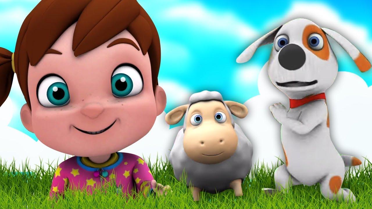 Mary Punya Domba Kecil Lagu Anak Kartun Anak Taman Kanak Kanak