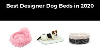 Best Designer Dog Beds in 2020