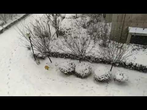 It is snowing in Henan Province
