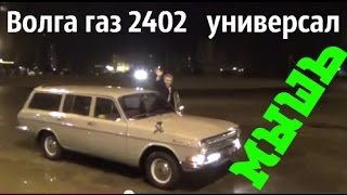 Волга газ 2402 универсал по имени МЫШЬ #купитьволгу #реставрацияволги