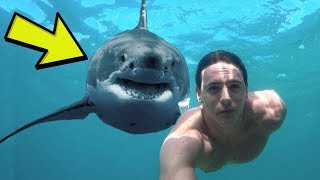 MOST CRAZY PHOTOBOMBS OF ALL TIME!
