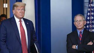 Trump Retweets 'Fire Fauci'