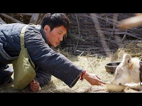 『セブン・イヤーズ・イン・チベット』などのジャン=ジャック・アノー監督が手掛けた感動作!映画『神なるオオカミ』予告編