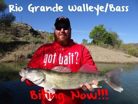 Rio Grande River Fishing