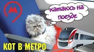 С котом вход разрешен! Метро | Кевин катается на поезде