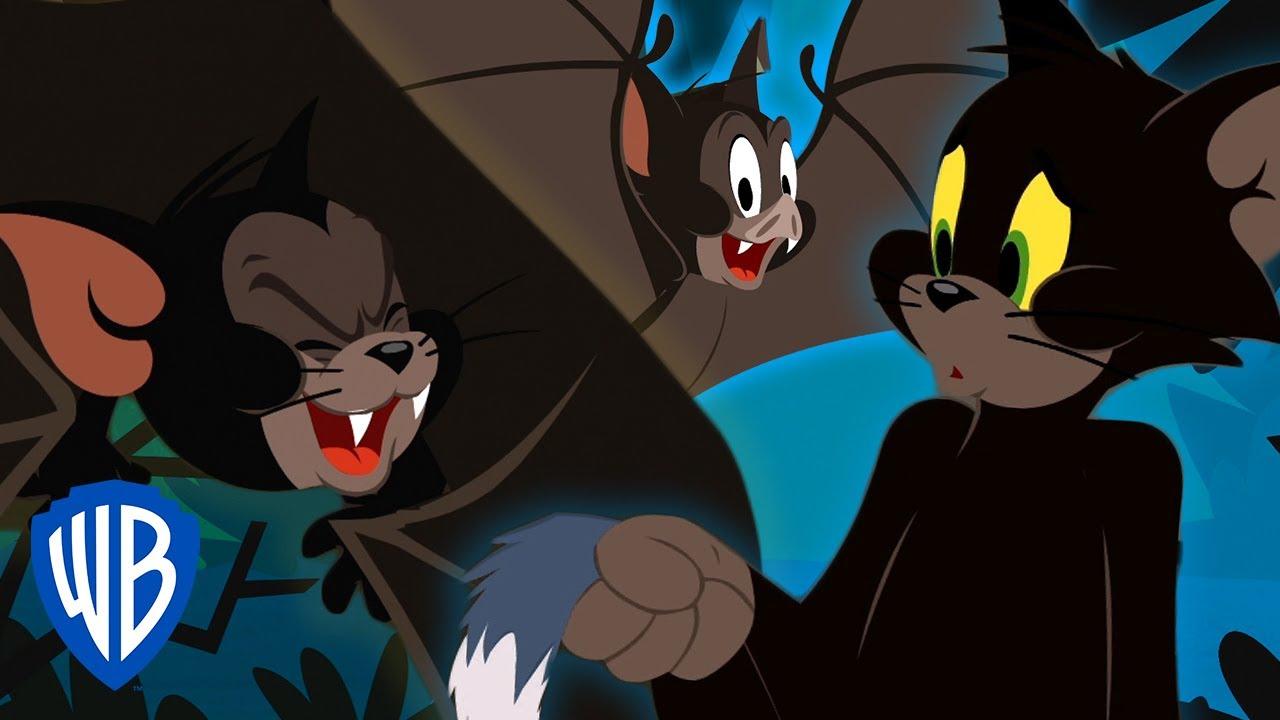 Tom & Jerry | Black Cats & Spooky Bats | WB Kids