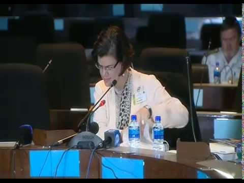 Arms Deal Commission, 07 August 2014: Session 1