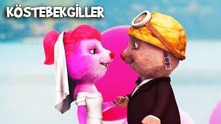 Kösteban ile Köstepem Evlendi  Köstebekgiller Perili Orman Animasyon Filmi
