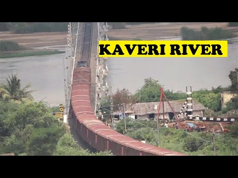 WDM Freight Like Brown Python Kaveri River