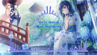 Chris Medina What Are Words Refeci Paamejer Bootleg Hay Đến Ngất Music EDM VN