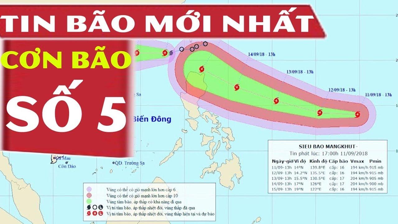 Tin Bão Số 5 Mới Nhất: Cơn Bão Số 5 Tiến Vào Biển Đông và Sẽ Mạnh Thêm