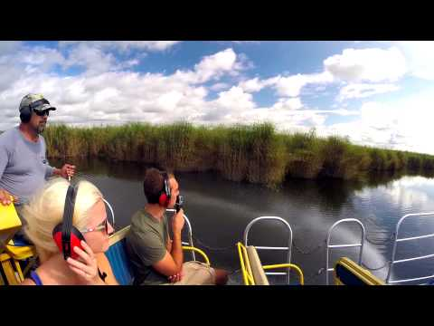 Black Hammock Adventures Airboat Tour