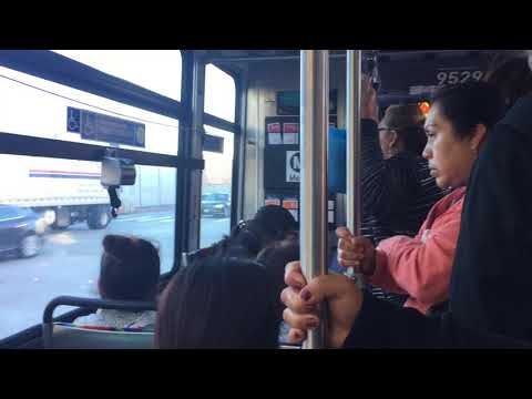 journey in crowded bus It was a hot day and i was in a hot temper, in a crowded mazda, called w-11, bouncing painfully, on the twists and turns of ma jinnah road, karachi i was standing in the narrow aisle of the.