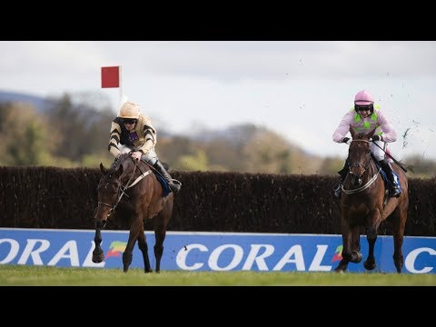 Bellshill - 2018 Punchestown G1 Gold Cup (Build Up, Race & Reaction)