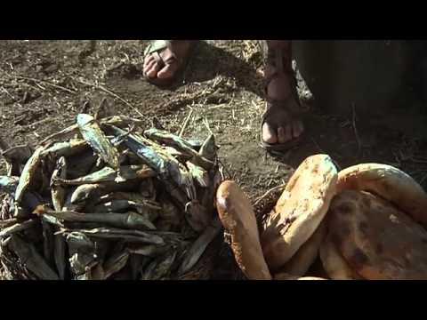 The Story of Jesus - Oromo, West Central / Afan Oromo / Oromiffa / Oromoo Language