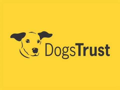 Dogs Trust Ireland Radio Advertisement 2013