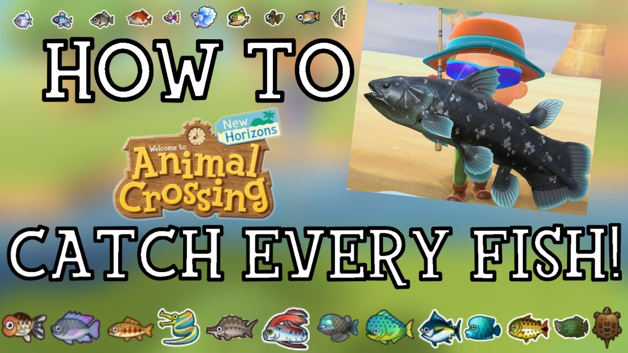 How To Catch Every Fish In Animal Crossing New Horizons New Horizons Fishing Guide Youtube Jump to navigationjump to search. how to catch every fish in animal crossing new horizons new horizons fishing guide