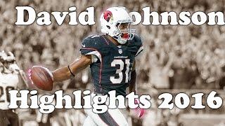 "David Johnson Highlights 2016-17 || ""Flickin' My Wrist"" || HD"