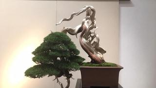 The 91st Kokufu-ten Bonsai show larger trees Part 1