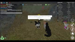 Roblox - France Wolves Life 3 - France I MEET ANOTHER YT ER!