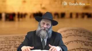 Histoire : L'importance de la Joie (rav Itshak 'Haviv)