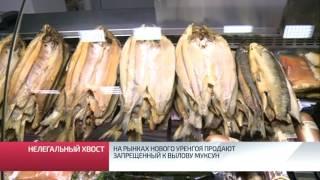 На рынках Нового Уренгоя продают запрещенную к вылову рыбу