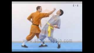Serie técnica 4 - Shaolin Luohan Shibashou - Seng Qiao Zhong