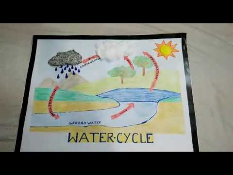 Water cycle project tutorial - YouTube