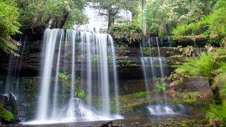 Tasmania Wilderness Photo Safari