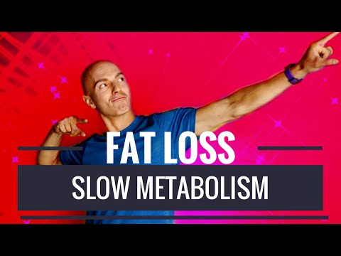The #1 Cause of a Slow Metabolism