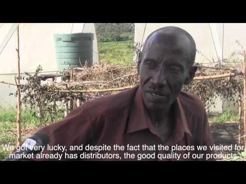 Rise and Shine Rwanda :  FARMING IN RWANDA