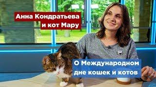 Петербург празднует Всемирный день кошек