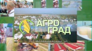 Агроград 03-04-19