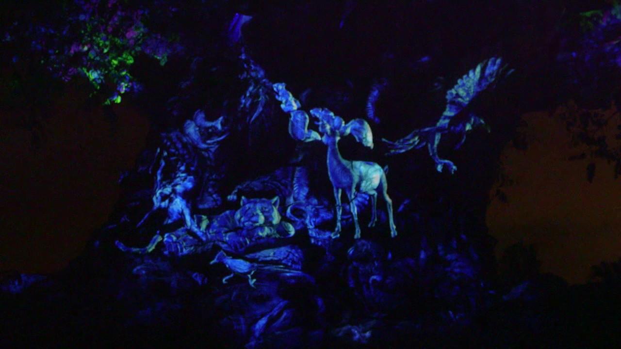 drones-surround-the-tree-of-life-at-disney-s-animal-kingdom