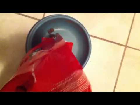 Costcos Kirkland Brand Natures Domain Dog Food Youtube
