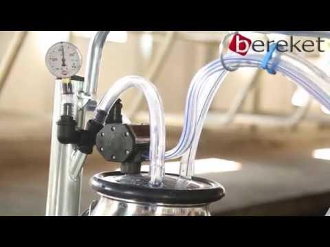 BS Mini X portable milking machine