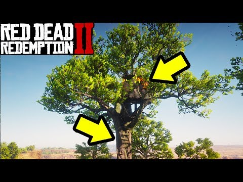 You Wont Believe What I found in Red Dead Redemption 2... thumbnail