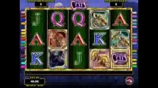 Free Play Emulator IGT Slots Machine Game Cats