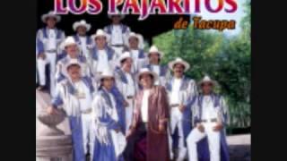 Los Pajaritos de Tacupa Michoacan-Flor De Limon