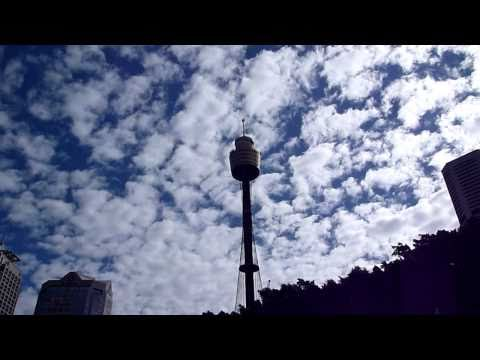 Sydney Tower and St Mary's Cathedral 720p HD