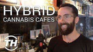 Tokyo Smoke Found | Hybrid Cannabis Cafes