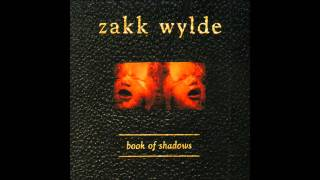 Zakk Wylde - What You're Look'n For (With Lyrics)