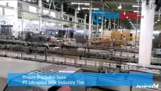 Melihat Proses Produksi Susu Di Pabrik PT Ultrajaya Milk Industry Tbk