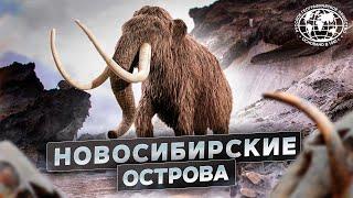 Новосибирские острова. Загадки земли мамонта | @Русское географическое общество