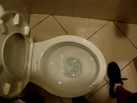 Toilet flush in South America