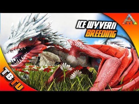 ARK ICE WYVERN BREEDING AND MUTATIONS! Ice Wyvern Baby Imprinting! Ark Survival Evolved