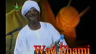 طمبور    صديق احمد. الفنان القانه