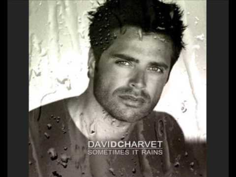 David Charvet  Fall into you