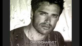 Watch David Charvet Fall Into You video