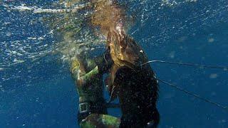 Pesca Submarina en Canarias 2017 -  Momentos Inolvidables